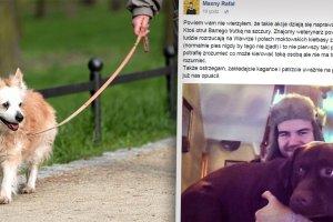 Znany youtuber ostrzega: Zabito mojego psa. Ktoś rozrzuca kiełbasy z trutkami