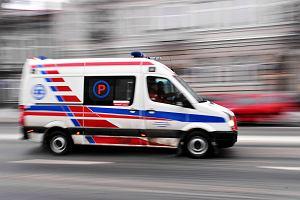 """Uważajcie na nadmorskich trasach. Osiem osób rannych w wypadku na """"trójce"""""""