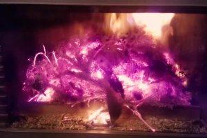 Jak się pali choinka w kominku