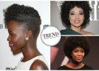 Afro staje się modne - także wśród polskich gwiazd. Zobaczcie jak noszą drobne, gęste loczki. Podoba wam się ten trend?