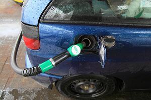 Dlaczego samochody spalają więcej niż w katalogu? Tak producenci mierzą zużycie paliwa