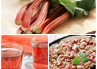 Rabarbar - coś więcej niż składnik kompotu