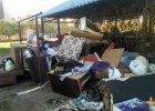 Plaga pluskiew na Bielanach. Mieszka�cy masowo wyrzucaj� meble