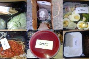 Catering dietetyczny - udogodnienie czy kaprys? [RECENZJA]