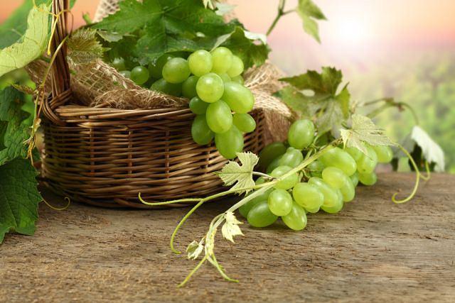 Winogrona aż w 3/4 składają się z wody