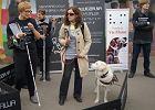 Niewidomi: nie wpuszczono nas do restauracji z powodu psów. Jest proces