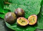 Owoce egzotyczne - które odchudzają?