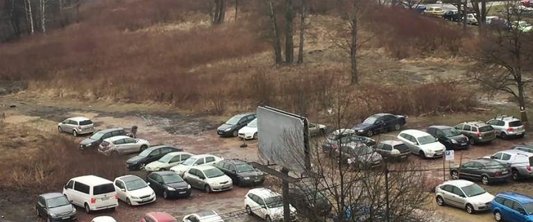 Parking przy Słonecznej Pętli. Parkingowy zakłada blokadę, gdy kierowca odchodzi