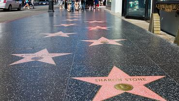 Los Angeles Hollywood - Walk of Fame (Aleja Sław) / Shutterstock