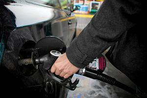 Niskie ceny ropy utrzymają się przynajmniej do 2020 roku. Dobre prognozy dla kierowców