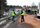 Czo�owe zderzenie busa z autobusem. 11 os�b rannych
