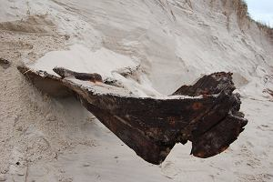 Niezwykłe znalezisko w Słowińskim Parku Narodowym. Sztorm na Bałtyku odsłonił zakopaną w wydmie łódź