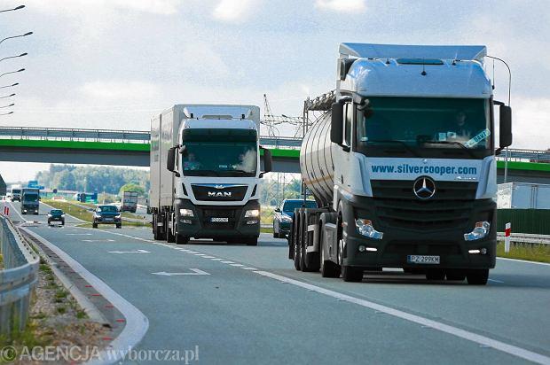 Autostrada A1. Urz�dnicy mierz� ha�as za lasem i ekranami