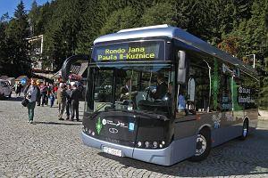 http://bi.gazeta.pl/im/93/c4/de/z14599315M,Prezentacja-autobusu-Solaris-Urbino-8-9-electric.jpg