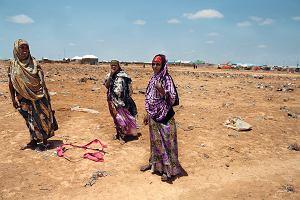 Sarna kopie na pustyni. Polska Akcja Humanitarna w Somalii
