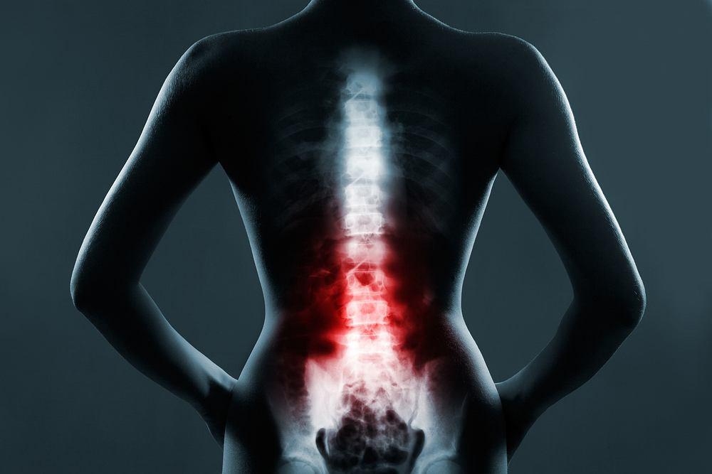 Odcinek lędźwiowy jest fragmentem kręgosłupa, który znajduje się w dole pleców, między odcinkami piersiowym a krzyżowym