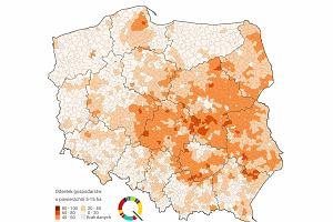 Polski farmer czy chłop małorolny? Co warto wiedzieć o ziemi rolnej w Polsce