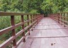 Regiony centralne. Park Narodowy Khan Yai. Najstarszy i najcz�ciej odwiedzany w Tajlandii obszar chroniony. Zamieszkuj�ce go zwierz�ta mo�na podziwa� ze specjalnie przygotowanych w tym celu wysokich wie�. Park porastaj� wiecznie zielone lasy monsunowe, rozci�gaj� si� w nim sawanny i tereny g�rskie.