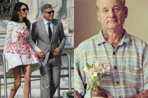 Jeste�cie ciekawi, jak wyglada certyfikat �lubu Clooneya? Wiadomo te�, gdzie para sp�dza miesi�c miodowy. A na koniec najlepsze! Co Bill Murray da� im w prezencie