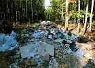 Coraz więcej śmieci w lesie