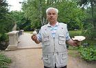 Pan Czesław znalazł dorodne pieczarki w Parku Ujazdowskim