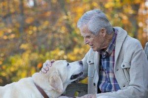 Alzheimer. Jaka powinna być nowoczesna opieka nad chorym