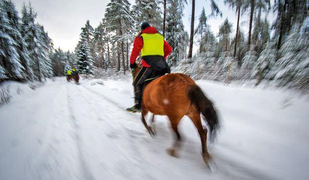 sport, Wyzwanie dla twardzieli: adventure racing, Etap konny był miłym urozmaiceniem 80-godzinnej odysei. Choć zdarzyło się, że zawodnicy zasnęli w siodłach.