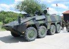 Niemcy: rz�d nie zgodzi� si� na przekazanie Litwie nowoczesnych transporter�w opancerzonych