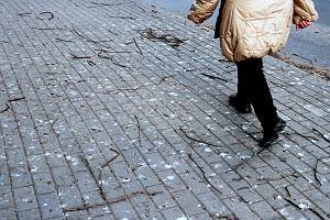 Wstydliwy problem w parku, chodniki w ptasich odchodach. Winna wycinka drzew w mieście