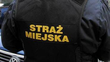 Funkcjonariusze straży miejskiej w okolicy wrocławskiej podstawówki zatrzymali pedofila. zaczepiał dzieci i obnażał się przed nimi.