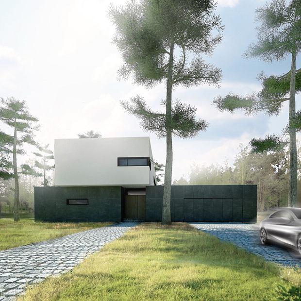 Dizajnerskie domy