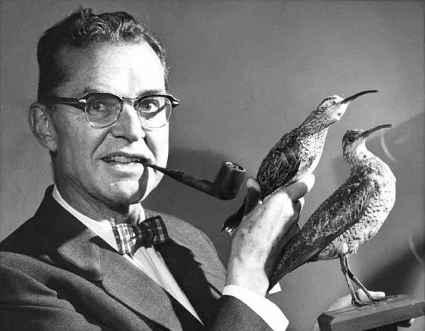 James Bond - ornitolog, który użyczył swojego nazwiska agentowi 007