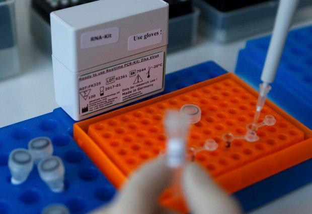 Wirus Zika dotar� do Hiszpanii