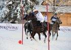 Bukovina Polo Snow Masters 2015 | Kr�lewski sport u podn�a Tatr