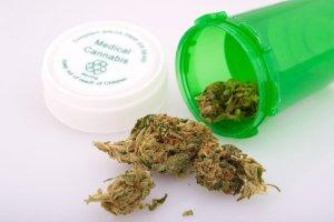 Minister zdrowia mo�e zgodzi� si� na refundacj� lek�w zawieraj�cych medyczn� marihuan�