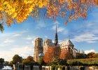 Stolica Francji we wrześniu? Top 15 darmowych atrakcji Paryża