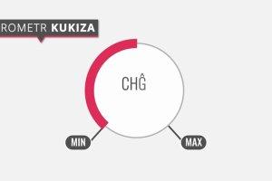 Wybory 2015. Animowana infografika o Kukiz'15