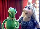 Muppety wracają do telewizji