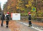 Wichura na Pomorzu. W Sopocie drzewo spad�o na przechodni�w, zgin�a 34-letnia kobieta