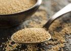 Amarantus - prastara alternatywa dla pszenicy. Nowa moda czy powr�t do naturalnego jedzenia?