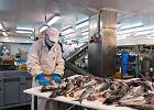 Od zwykłego straganu do giganta branży rybnej