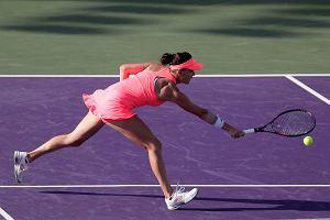 WTA W Eastbourne. Radwańska zagra w półfinale