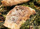 Sandacz na szpinaku z gorgonzol�