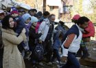 Imigranci i my. Dekalog ks. Halika