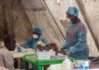 Naukowcy odkryli kilka tajemnic eboli. Badania okupili swoj� krwi�