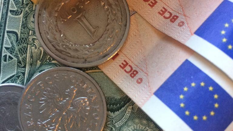 Dolary i euro w banknotach oraz złotówki