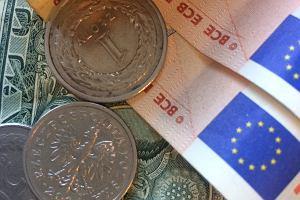 Euro może być wkrótce po 4,50 złotych. Tak twierdzą analitycy największego banku ze Skandynawii