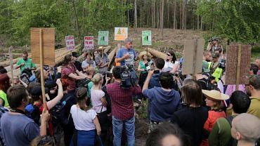 Akcja obywatelskiego sprzeciwu - spacer po Puszczy Białowieskiej