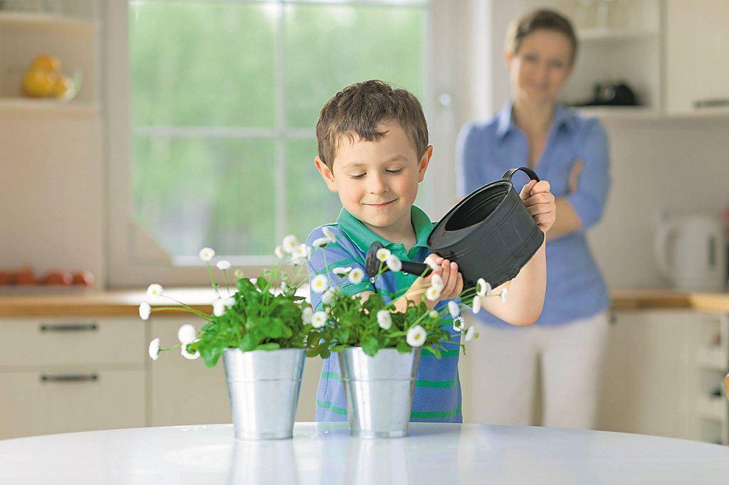 Opieka nad roślinami uczy dziecko odpowiedzialności i daje satysfakcję.