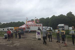 Protestują przeciwko występom zwierząt w cyrku. Ze smutnym słoniem i zaangażowanym rapem